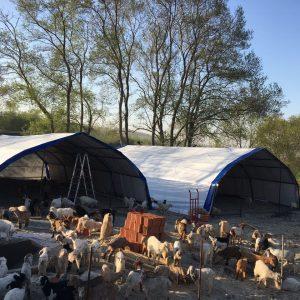 Hayvan Barınak Çadırları